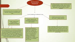 ecologia humana yesica arevalo you