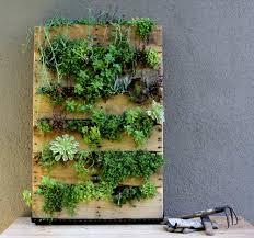 recycled pallet vertical garden