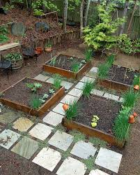 pathway between raised beds sub with