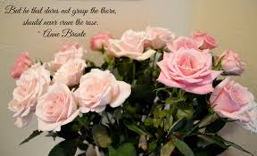 best rose quotes to show your love