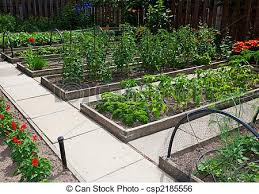 raised vegetable garden beds raised
