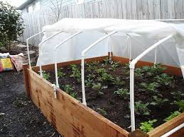 cold frame for a raised garden bed