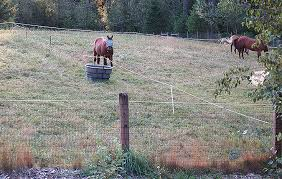 Http Www Sccd Org Paddock 20 20pasture 20fencing Pdf
