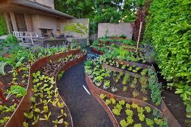 steep backyard into a terraced garden