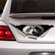 Raccoon Car Decal Animal Decal 3d Sticker Vinyl Decal Etsy
