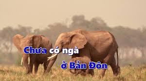 Chú voi con - Nhạc thiếu nhi vui nhộn (Karaoke) - YouTube
