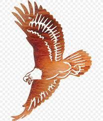 Bald Eagle Wall Decal Metal Png 651x964px Bald Eagle Accipitriformes Art Artist Beak Download Free