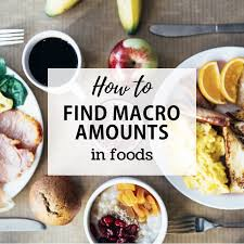 track macros in the foods you eat