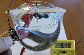 build a hydrogen fuel cell in your