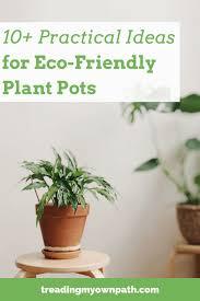 eco friendly plant pots