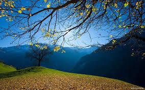 hd wallpaper nature scenery beautiful