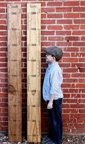 Metric Diy Growth Chart Ruler Vinyl Decal Kit Alternating Etsy Growth Chart Ruler Growth Chart Wooden Growth Chart