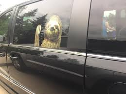 My Neighbor Has A Sloth Decal For His Car Mildlyinteresting