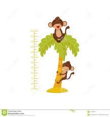 Height Chart For Children And Funny Monkeys On Palm Tree Tropical Animals Measuring Wall Sticker For Kids Room Flat Stock Vector Illustration Of Funny Cartoon 115566731