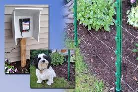 Above Ground Dog Fence Fence Ideas