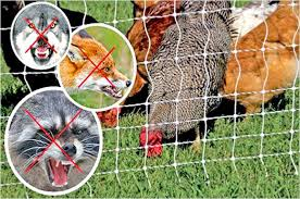 Electric Fence Netting Kit Primary Electric Garden Fence Netting La77468 In 2020 Electric Fence Garden Fence Electric Poultry Netting