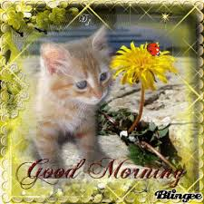 Good Morning in Spring Animated Picture Codes and Downloads ...