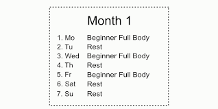 The Essential 6 Month Calisthenics Workout Plan | Bar Brothers ...