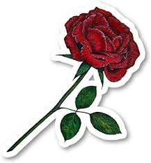 Amazon Com Red Rose Sticker Garden Stickers Laptop Stickers 2 5 Inches Vinyl Decal Laptop Phone Tablet Vinyl Decal Sticker S214414 Arts Crafts Sewing