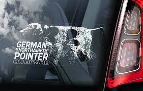 German Shorthaired Pointer On Board Car Window Sticker Etsy