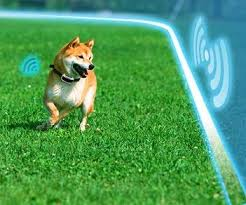 30 Best Electric Wireless Dog Fences Underground Invisible Dog Fence In 2020 Dog Fence Dog Training Collar Pet Fence