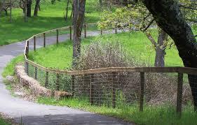 Garden Fence Wire Mesh Garden Design Ideas