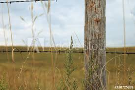 Rustic Barbwire Wooden Fence Post In Rural Midwest Nebraska On Farm Buy This Stock Photo And Explore Similar Images At Adobe Stock Adobe Stock