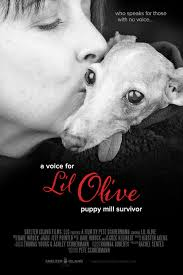 Brochure - A Voice for Lil Olive