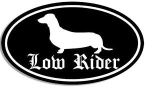 Amazon Com Jr Studio 3x5 Inch Black Oval Dachshund Low Rider Sticker Decal Dog Breed Funny Dach Vinyl Decal Sticker Car Waterproof Car Decal Bumper Sticker Kitchen Dining