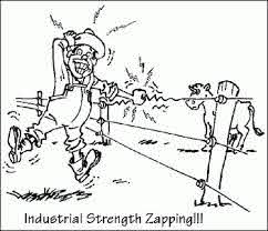 Electric Fences Make Hilarious Stories On Pasture