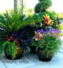 flower container ideas planting