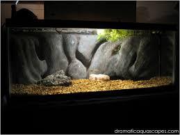 dramatic aquascapes diy aquarium