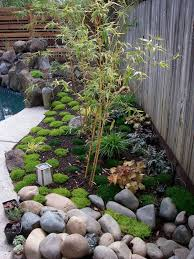 small aphonse karr bamboo in japanese