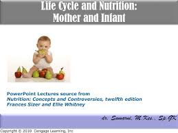life cycle and nutrition mother and infant