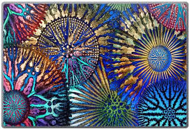 Cosmic Star Coral Colorful Coral Reef Laptop Skin Da Vinci Case Artistic Iphone Cases And More By Artist Christopher Beikmann