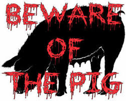 Beware Of The Pig Vinyl Decal Sticker Two Options Many Sizes To Choose From Ebay