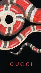 gucci snake wallpaper on wallpapersafari