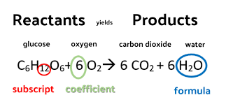 coefficient chemical equation