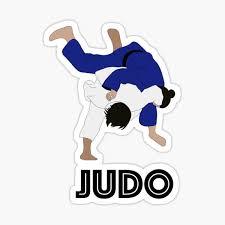 Judo Stickers Redbubble