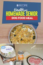 homemade senior dog food recipe with