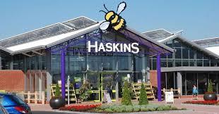 haskins garden centre roundstone