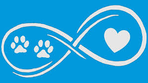 Amazon Com Bluegrass Decals Infinity Paws Heart Dog Or Cat Decal Sticker White 7 Automotive
