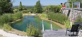 natural swimming pools everything you