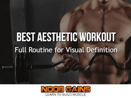 workout routine bodybuilding program