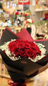 Rose Imagination Flowers Im9 Twitter