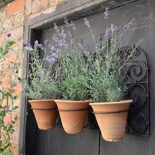 Wall Or Fence Decor The Worm That Turned Revitalising Your Outdoor Space