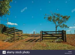 Cattle Guard High Resolution Stock Photography And Images Alamy