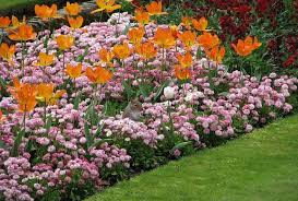 low maintenance flower bed ideas to
