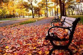 صور فصل الخريف خلفيات عن الخريف مجلة البرونزية