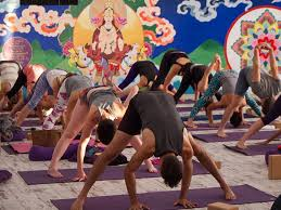 top 10 yoga and horse riding holidays